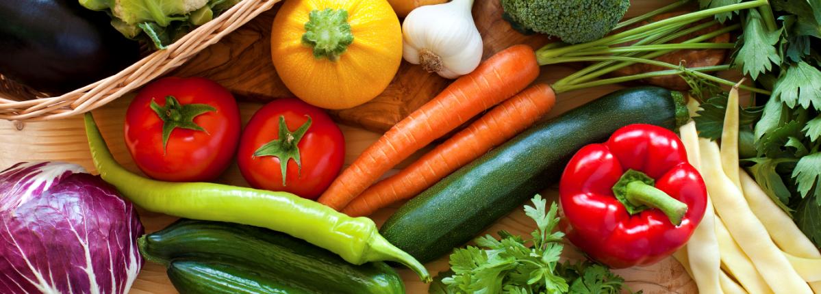 healthy diet for seniors